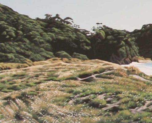 Matapouri Pohutukawa