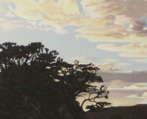 Medlands Dawn