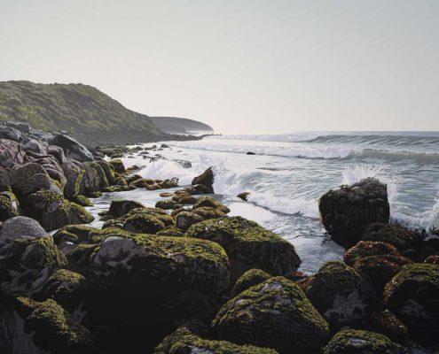 Round The Rocks Manu Bay Raglan