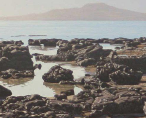 Commissions Takapuna Reef 2